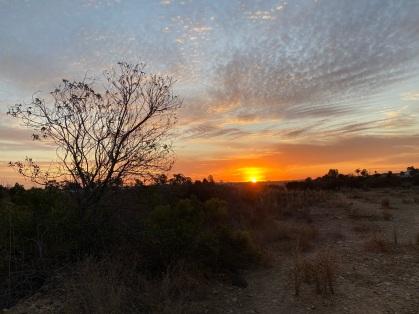 Sunset from Jonas Salk Elementary School